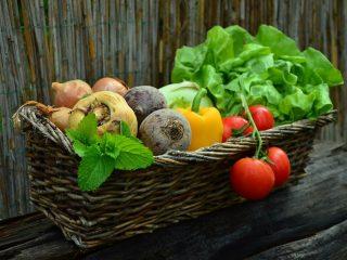 vegetable consumption statistics